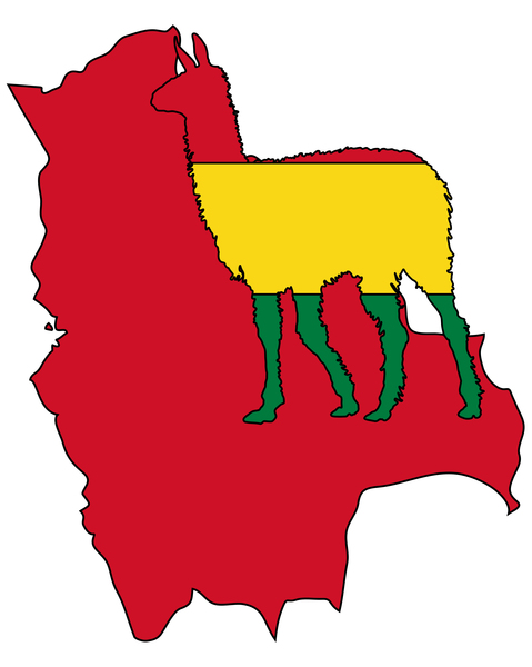bandiera sudamerica bandiere ande bolivia