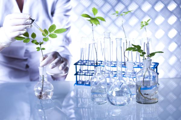 bio medico medicina esperimento ricerca eco