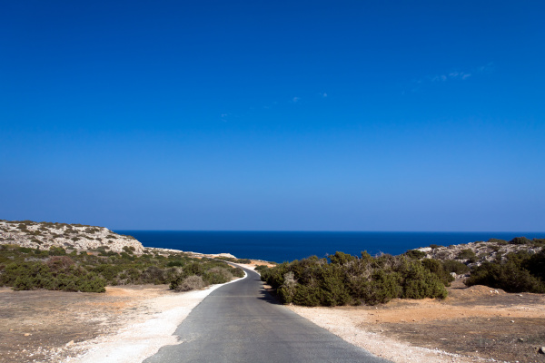 blu albero pietra sasso vacanza vacanze