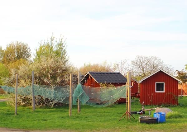 casa costruzione verde pesce nero estate