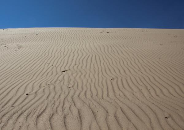 primo piano spazio deserto riva del