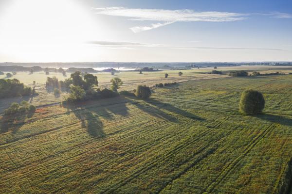 germania brandeburgo vista drone di vasto