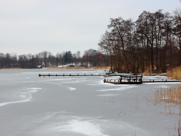 lago, invernale, con, acqua, ghiacciata, e - 29743714