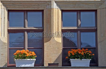 casa costruzione finestra fiore fiori stile