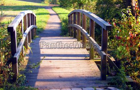 luce albero alberi parco verde ponte