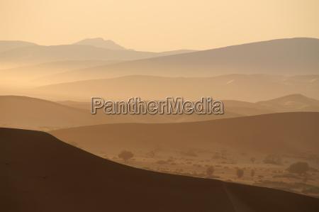 mattina del deserto