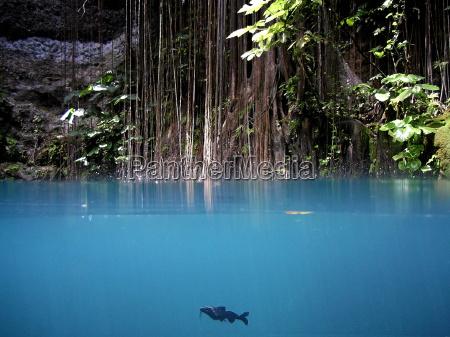 blu luce piantare seminare grotta pesce