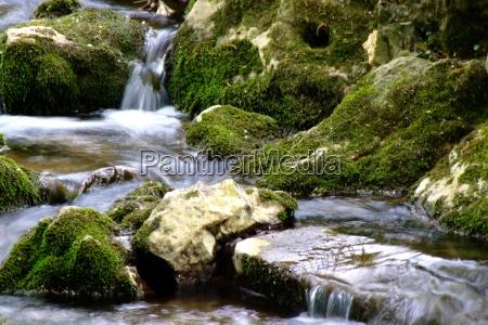 esistere liquido relax verde selvaggio romantico