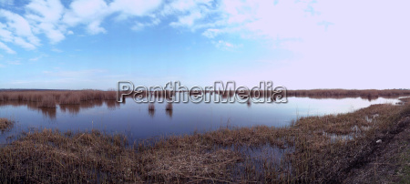 lake landscape with grass