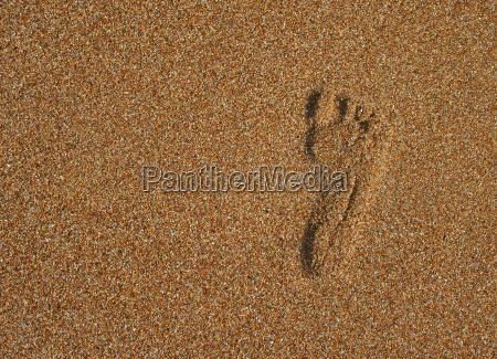 riva del mare spiaggia liberta piede