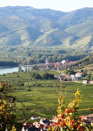 collina vigneto danubio viticoltura patrimonio germania