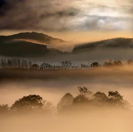 mondi della nebbia