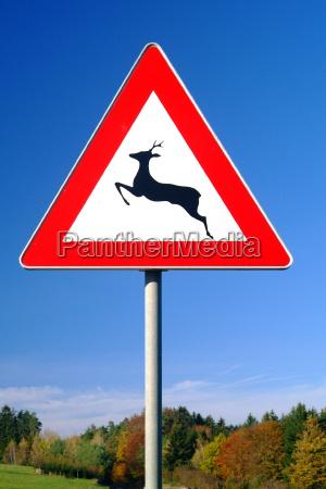 segnale stradale deer crossing