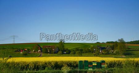 blu case rurale albero alberi verde