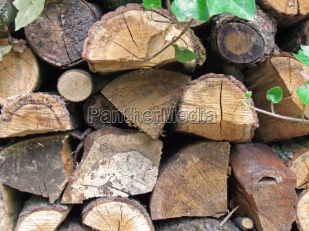 albero giardino legno carburante impilati giardini