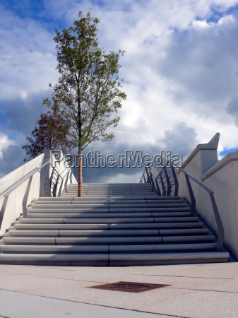 blu scala scale albero nuovo caucasico