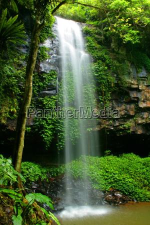 cascata nel parco nazionale di dorrigo