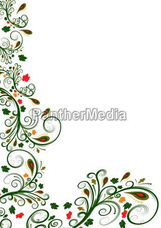 fiore illustrazione