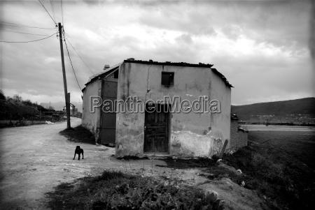 guerra rovina kosovo balcani villaggio