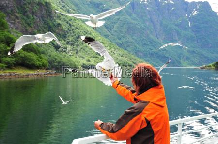 donna norvegia fiordo imboccare traghetto gabbiani