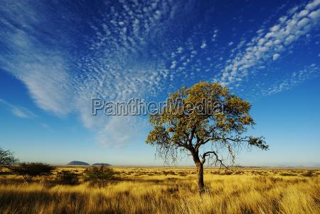 cielo sopra la namibia