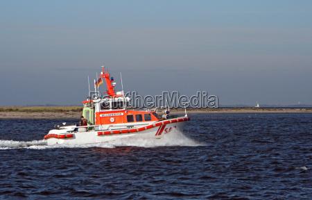 acqua mar baltico acqua salata mare