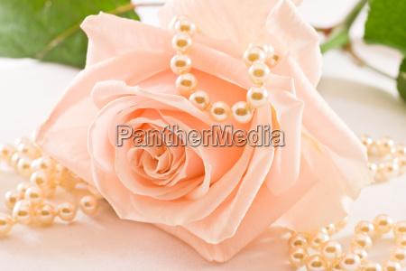 fiore rosa perle collana amare amore