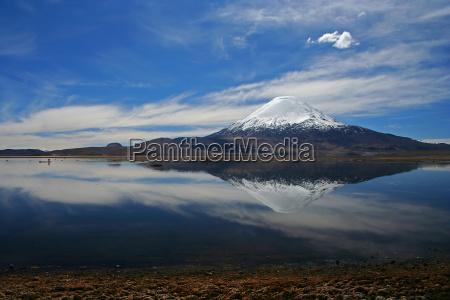 cile vulcano parinacota lago chungara lauca