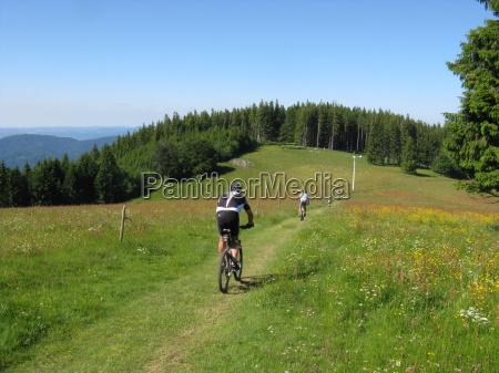 ruota mountain bike bicicletta foresta nera