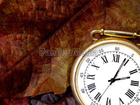 foglia orologio tempo autunnale foglie di