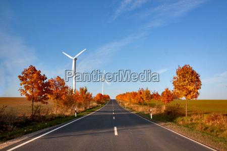 albero alberi pala eolica strada girandole