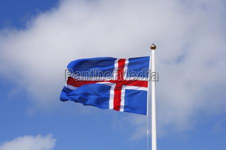 liberta bandiera svolazzare unita albero diplomazia