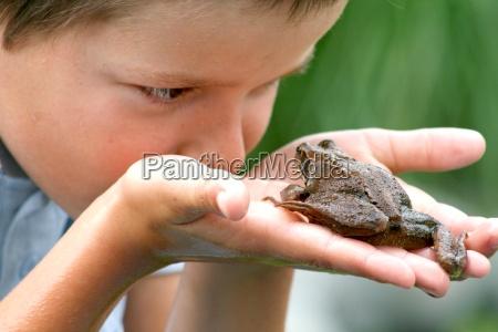 giardino curiosita rana rospo giardini bambino