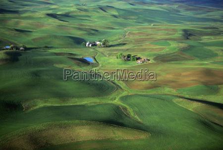 agricolo collina agricoltura campo orizzontale fotografia