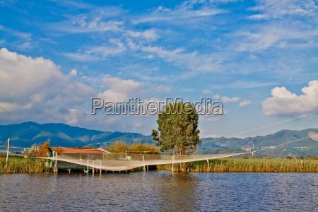 albero europa pesca sguardo vista laguna