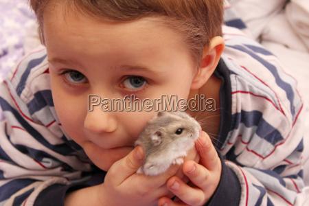 amicizia animale domestico criceto amore per