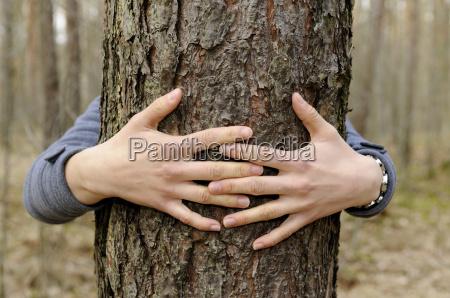 mano mani albero tronco contatto toccare