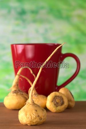 radice ingrediente peruviano sano