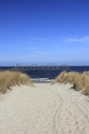 romantic trail to the beach