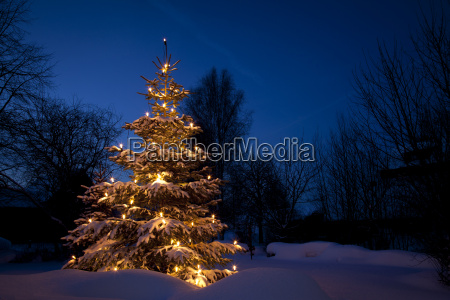 albero di natale in neve