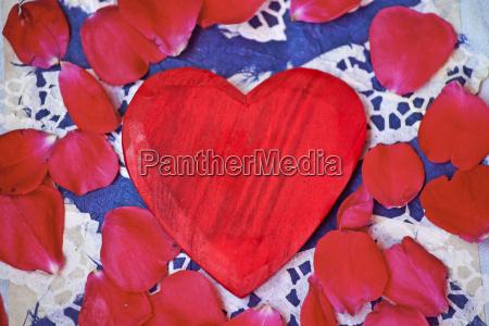 romantico rose palissandro petali amare amore
