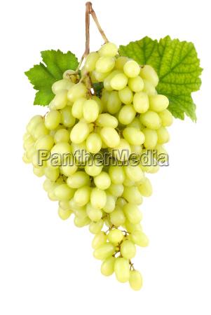rilasciato uva maturo frutta brina isolato
