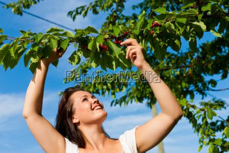 donna cibo sgranocchiare giardino estate ciliegia