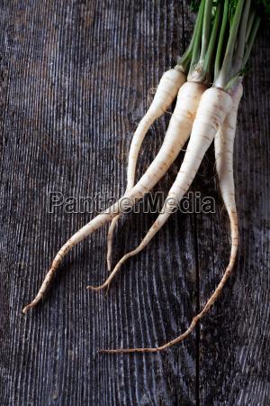 legno radice verdura mensola prezzemolo pagina