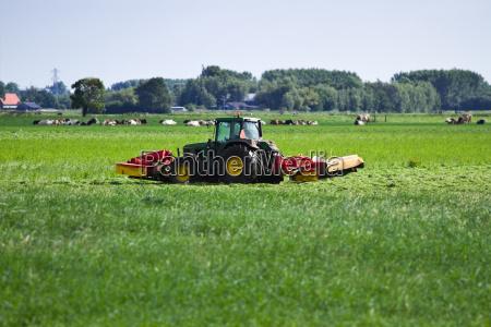 agricoltura olanda paesi bassi paese olandese
