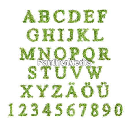 verde lettere contare alfabeto abc prato