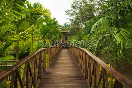 passerella in legno giungla sepilok borneo