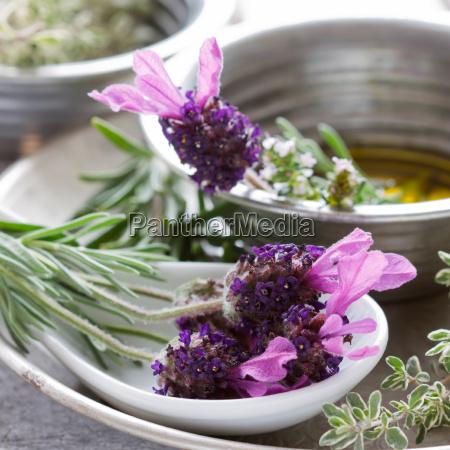 naturaleza muerta comida salud verano veraniego
