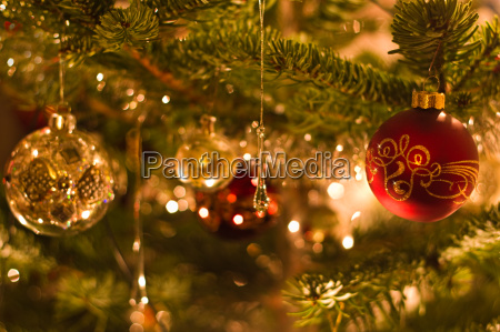 decoration in christmas tree shallow