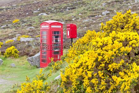 telefono pubblico cabina telefonica telefono flora